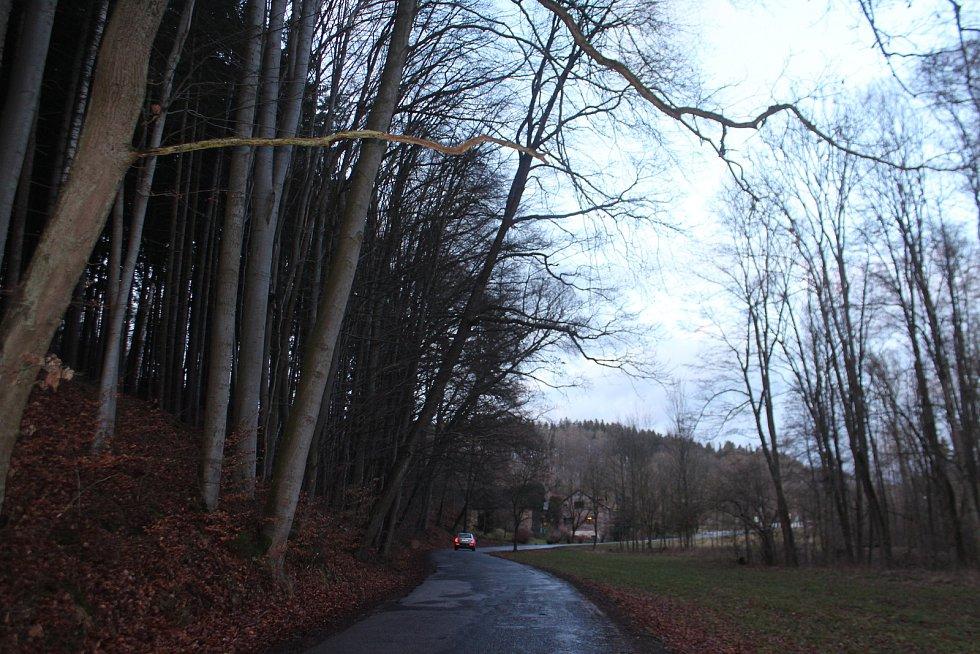 Nebezpečný úsek před obcí Stav, kde jsou nakloněné stromy nad vozovkou druhé třídy.