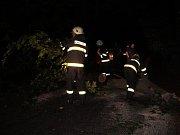 Nebezpečný pád stromu u obce Stav.