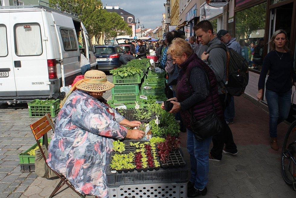 Sadba zeleniny a květiny jdou na odbyt.