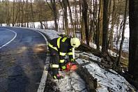 Strom bránil průjezdu v Horní Nové Vsi.