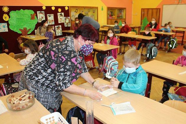 Do základní školy se vrátily vpondělí také děti prvního stupně základní školy ve Staré Pace. Některé přišly srodiči, kteří se chtěli testování zúčastnit.