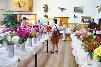 Z výstavy květin v Přepeřích.