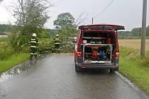 Spadlý strom mezi Butovsí a Kovačí.