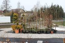 Zahradnictví v Čisté u Horek.