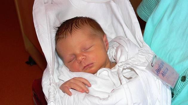 Pro Adélku si přišli do porodnice tatínek Pavel Janák s čtyřiapůlletým Davídkem. Maminka Michaela se už moc těšila domů do Bělohradu, ale stačila nám ještě prozradit, že Adélka vážila 3120 g a měřila 47 cm.