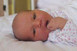 Emily Junková se usmívá na svět od 14. října, kdy se narodila s mírou 52 cm a váhou 3,63 kg. Z miminka se radují rodiče Lucie a Jakub Junkovi z Pátku.