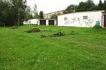 Vandaly zničené lípy u garáží za jičínským sídlištěm U Trati.
