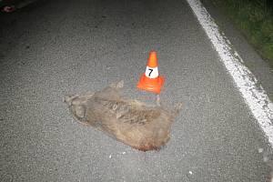 Po srážce s kamionem u Vojic zůstalo na silnici několik kusů uhynulých divočáků.