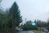 Spadlý strom přes silnici u Libunce.