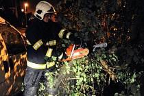 Hasiči odstraňovali spadlé stromy a další škody způsobené silným větrem a deštěm.