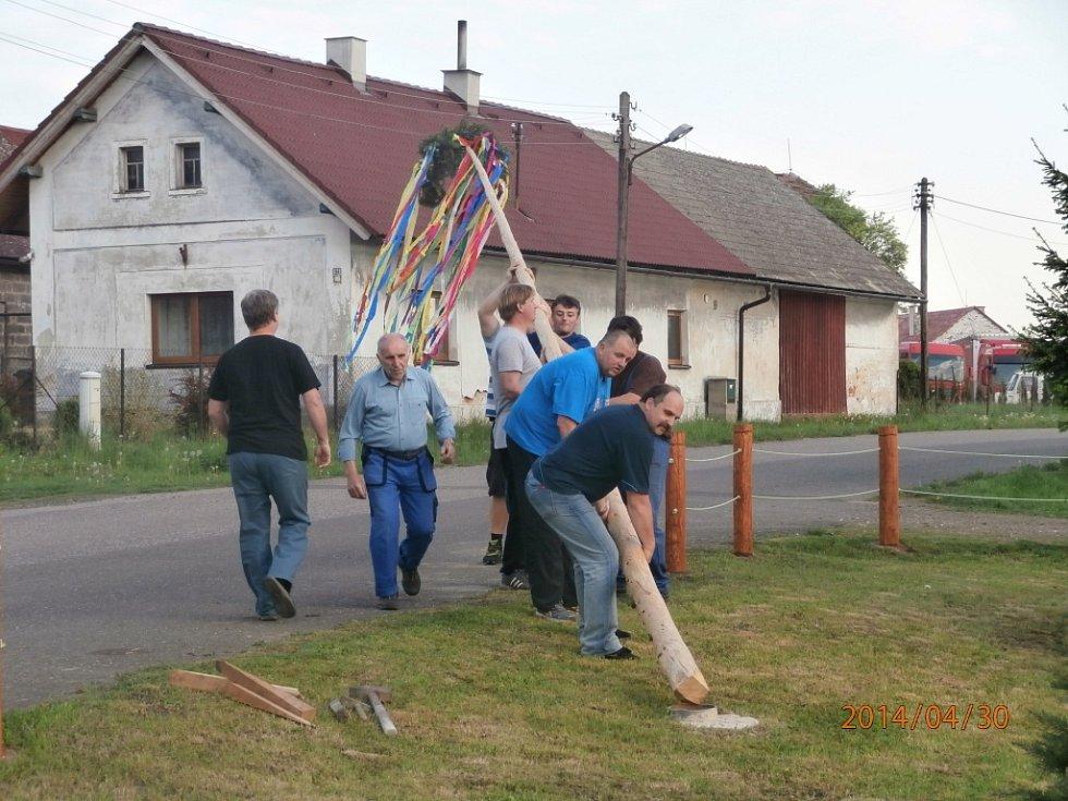 Stavění májky v Čejkovicích.