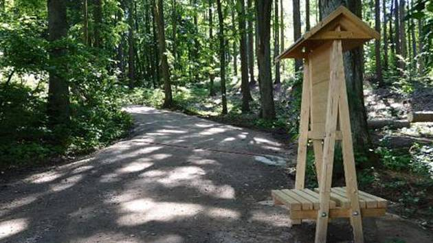 Lesní cesta ke Startu je již hotová.