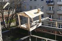 Hrdlička zahnízdila na balkoně v krmítku.