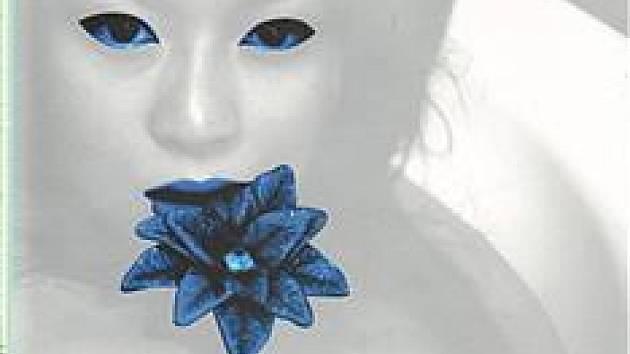 Obal knihy Rjů Murakamiho Nekonečná, téměř průzračná modř.