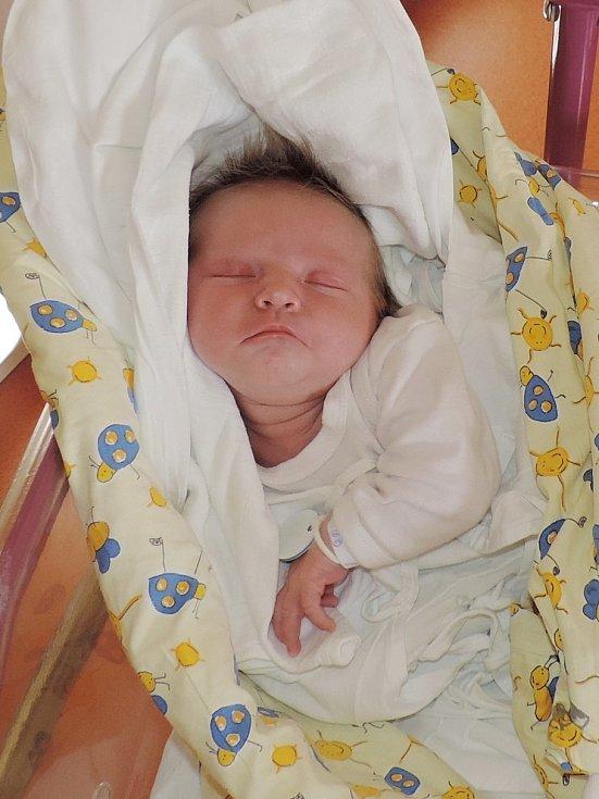 ADÉLA HAVRDOVÁ (3,87 kg, 51 cm) poprvé spatřila v jičínské porodnici své rodiče Alenu a Davida Havrdových 10. března. Trojlístek bydlí v Žernově na Semilsku.