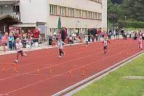 Sokolské olympijské hry na novopackém Letním stadionu.