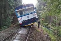 Po nárazu do spadlého stromu vlak vykolejil.