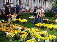 Prodejní výstava v rámci Kopidlenského kvítku.
