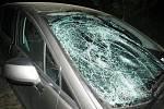 Na Jičínsku markantně stoupl od začátku roku počet nehod, způsobených zvěří.