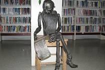 Z novopacké knihovny.