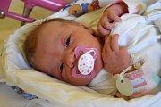 Štěpánka Tauchmanová přišla na svět 27. listopadu s porodní mírou 49 cm a váhou 3,31 kg. Šťastní rodiče Nikola a Stanislav Tauchmanovi si malou Štěpánku odvezli domů do Lázní Bělohradu, kde na sestřičku čekal pětiletý Matyáš.