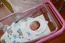 KAROLÍNA AUSTOVÁ (3,71 kg, 48 cm) poprvé mrkla 7. ledna na své rodiče Kateřinu Pávovou a Jana Austa z Jičína. Doma už se na sestřičku těšila také téměř dvouletá Marie.