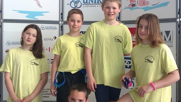 JIČÍNSKÁ výprava vybojovala ve veliké konkurenci úspěch na mezinárodních závodech v Brně.