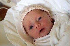 Sára Vacková přišla na svět 21. května s porodní mírou 47 cm a váhou 2,82 kg. Radost z miminka mají rodiče Lucie Košťálová a Ondřej Vacek z Hořic.