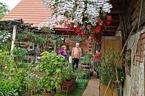 Víkend otevřených zahrad v Újezdci u Syřenova.