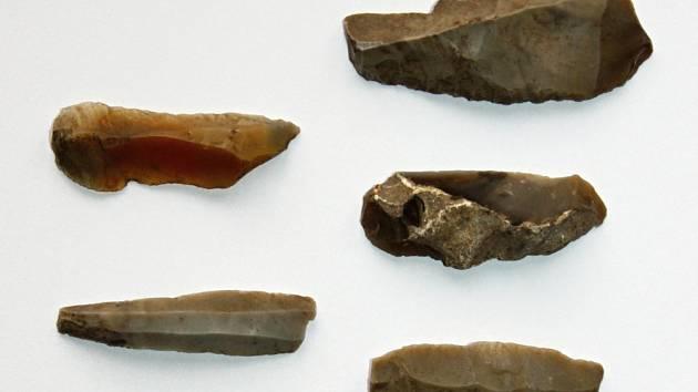 Soubor štípané industrie nalezený nedaleko obce Češov, nyní uložený ve sbírce Regionálního muzea a galerie v Jičíně.