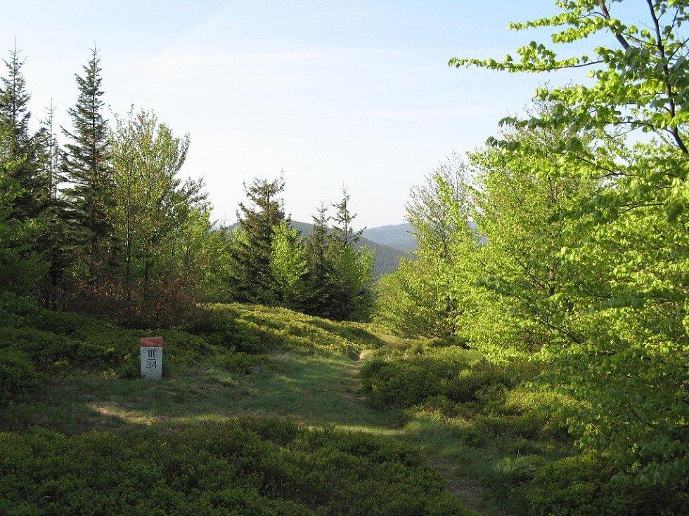 Výhled z Břidličného vrchu zpět na Kovadlinu.