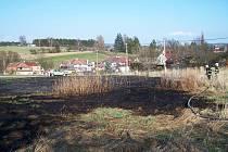 Následky vypalování trávy - Úpice.