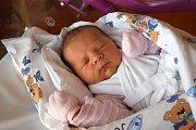 THEA ŠTĚPÁNKOVÁ se 4. března narodila rodičům Pavlíně  a Jakubovi Štěpánkovým. Po narození měřila 51 cm a vážila 4,00 kg. Spokojená rodina žije v Lázních Bělohradu.