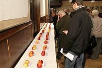 Degustace jablek v hořické Koruně.