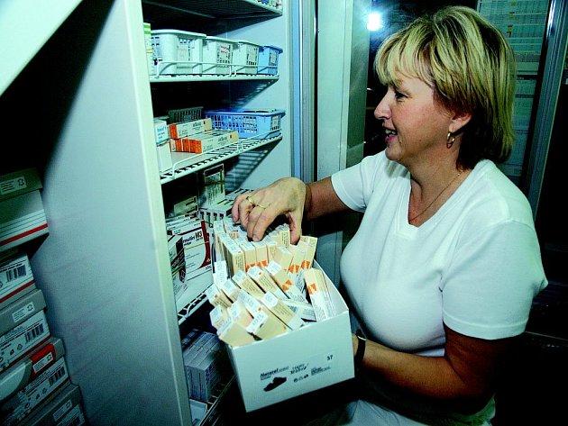 Laborantka Anežka Charousková v jičínské lékárně ukládá vakcíny do ledničky, kde jsou skladovány při stálé teplotě.