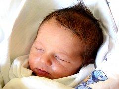 VOJTĚCH NOVOTNÝ se narodil 14. ledna rodičům Kateřině Preusslerové a Bohumilu Novotnému . Po porodu měřil 50 cm a vážil 3,15 kg. Šťastná rodina bydlí v Kovači, kde Vojtíška vyhlížel dvouletý bratříček Ondra.