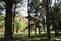 V centrální části sídliště na náměstí Václava Čtvrtka vznikne odpočinkový park. Zeleň se dočká prořezání a bude vysazeno několik nových stromů.