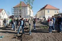 Sázení stromů v Dolním Bousově.