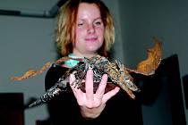 Adéla Rulfová s modelem draka.
