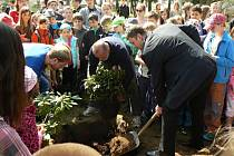 Vyvrcholením oslavy Dne Země bylo tradiční sázení zeleně, letos rododendronů, před školou. Podíleli se na něm (zleva) učitel Jan Sezima, ředitel školy Milan Smolík a místostarosta města Aleš Svoboda