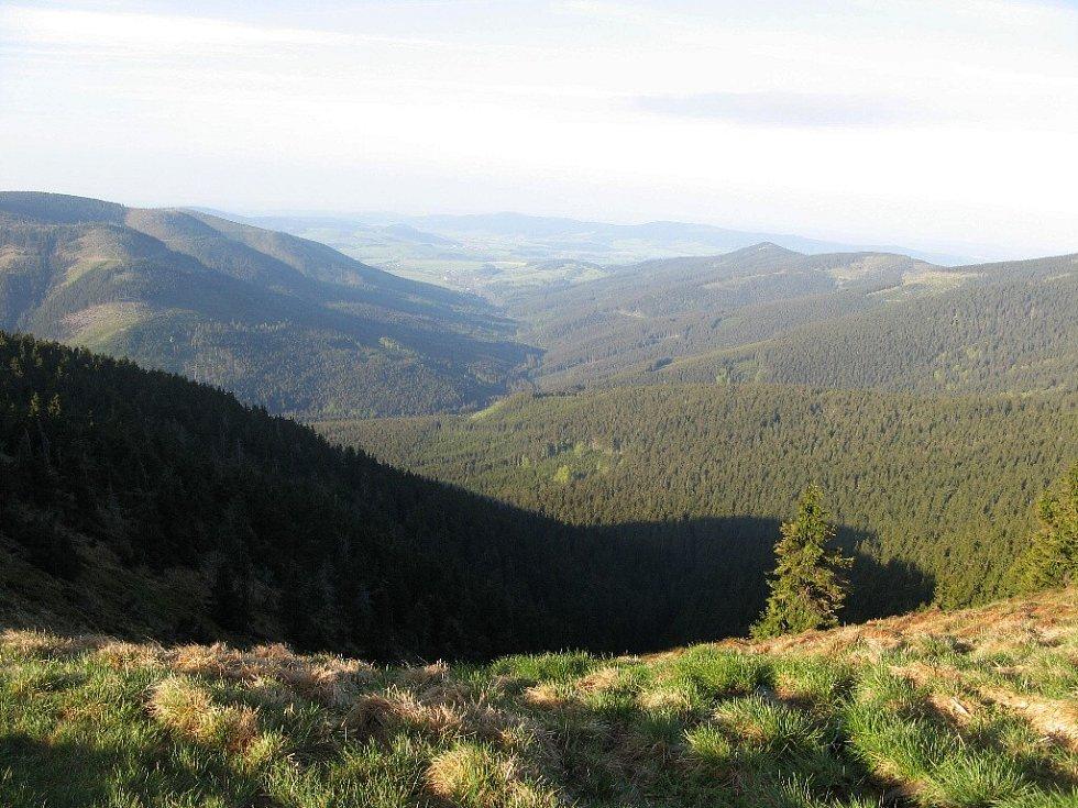 Pohled od pramene Moravy.