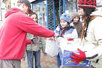 Hořičtí skauti prodávali velikonoční kuřátka.