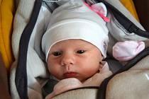 Ella Jahodová se narodila 6. září s mírou 48 cm a váhou 2,96 kg. Z narození první dcerky se radují Alena a Radim Jahodovi, kteří si ji odvezou do Bradlecké Lhoty.