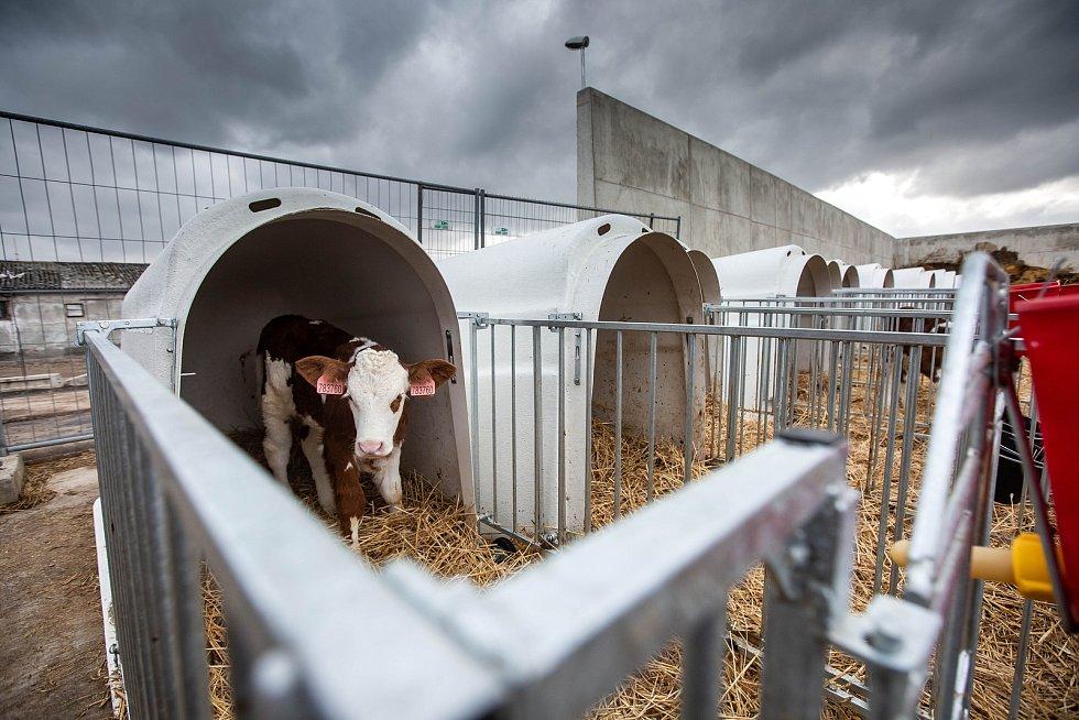 Hořická zemědělská škola vybudovala nový statek.
