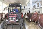 Z jedné z hal Lužanské zemědělské akciové společnosti.