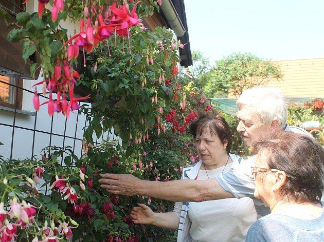 Ojedinělá výstava v zahradě manželů Suchardových v Újezdci u Syřenova na Novopacku.