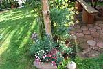 V Újezdci u Syřenova je zpřístupněna květinová zahrada manželů Suchardových, kteří se specializují na pěstování fuchsií.
