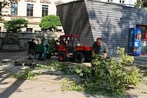 Úklid jičínského parku po bouři.