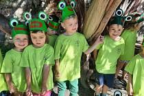 Děti z jičínské MŠ Máj se při pohádkovém festivalu přestrojily za žabičky.