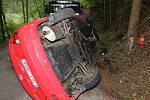Auto s pěti cizinci narazilo do stromu. Jeden z nich nehodu nepřežil.